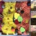rizs alapú érzékelődoboz, színes rizs, faszelet, mókus figura, dió, gesztenye, mogyoró, filc gyümölcsök, üveggolyók, őszi képek