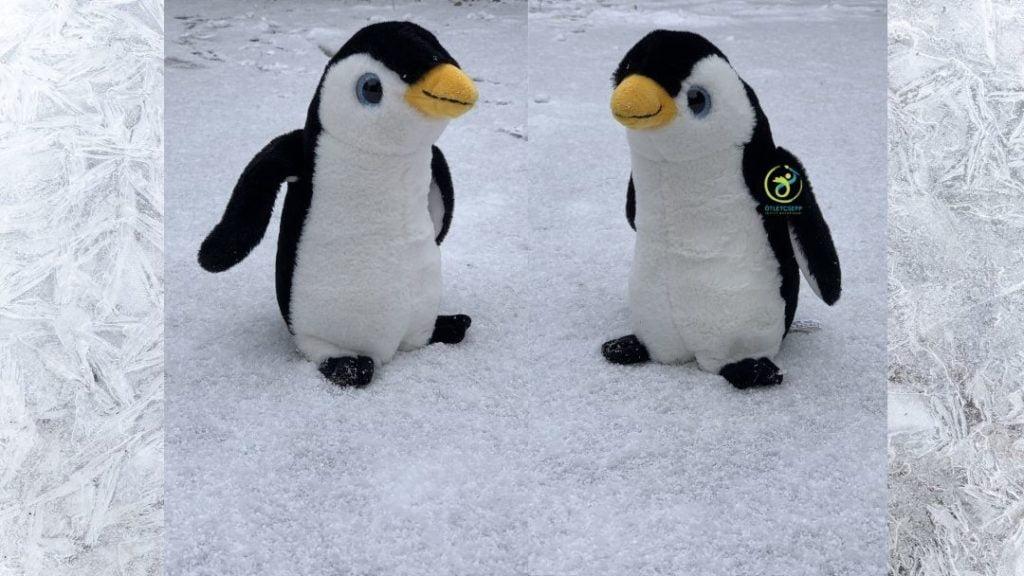 2 plüss pingvin álla. hóban